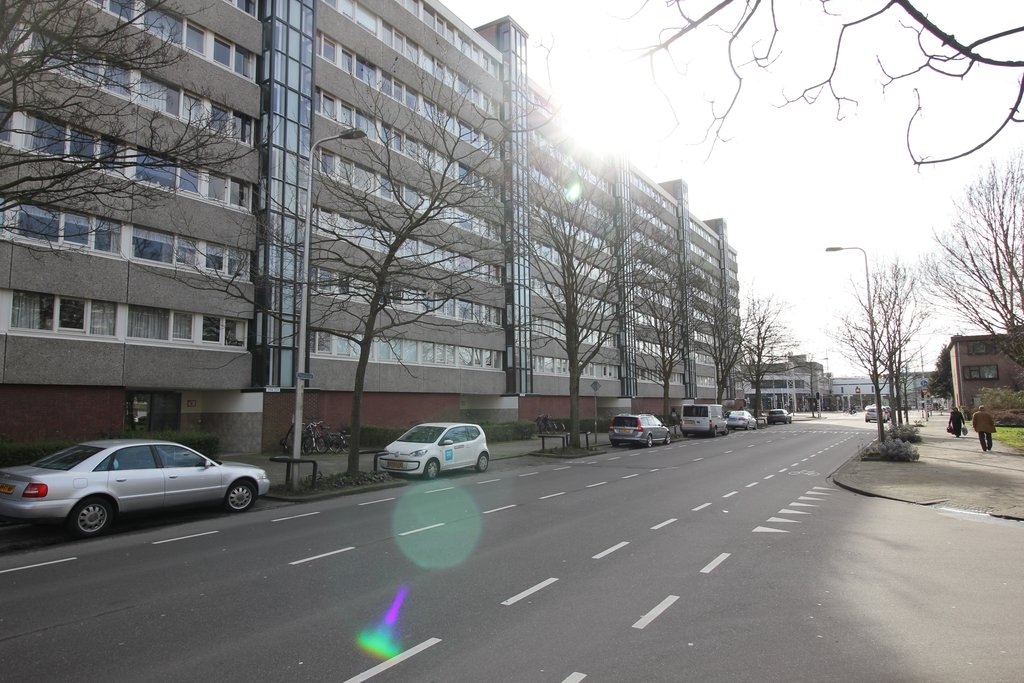 Theemsdreef, Utrecht