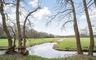 Barnsteenhorst 220