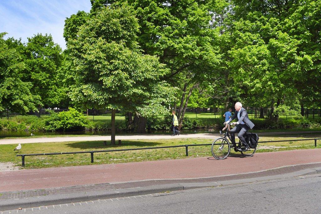 Anna van Buerenplein 135