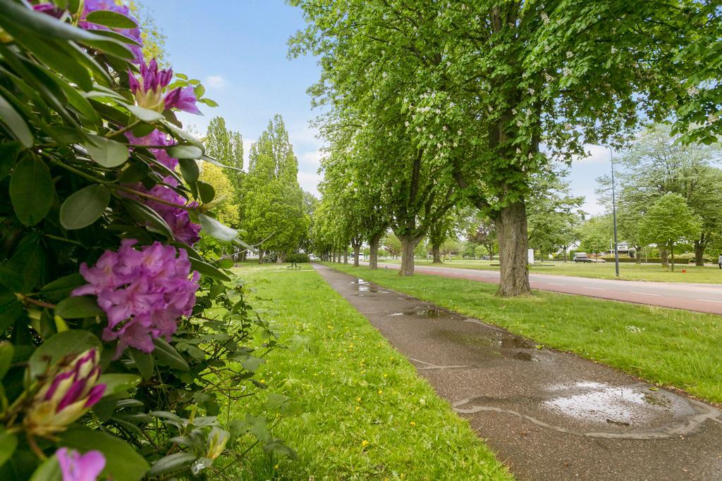 Zuiderparkweg 85 A 5216 HA 'S-HERTOGENBOSCH