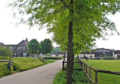 Pellendijk 4 in Westendorp 7054 AL