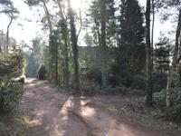 Ruurloseweg 30 V27 in Zelhem 7021 HB