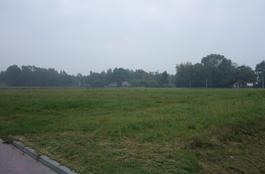 Berkenstraat in Alteveer 9661 AX