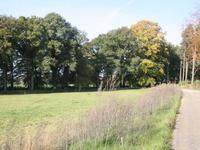 Oude Needseweg in Markelo 7475 MG