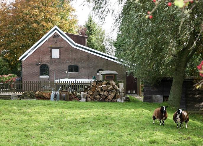 Hollemaarsedijk 10 in Zwartewaal 3238 LK