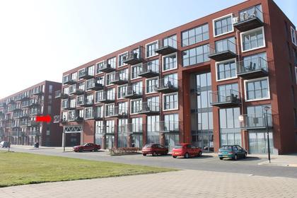 Zuiderlicht 365 in Heerhugowaard 1705 TV