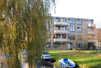 Narcisplantsoen 148 in Haarlem 2015 AN