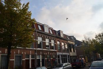 Kloosterstraat 55 Rd-B in Haarlem 2021 VK