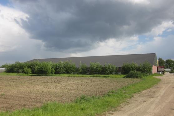 Hofweg / Nieuwe Peeldijk 55A in America 5966 NA