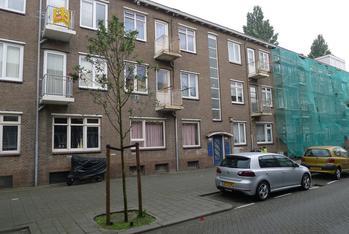Madeliefstraat 55 B in Rotterdam 3083 TD