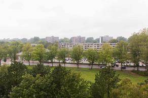 Honthorstlaan 258 in Alkmaar 1816 TK