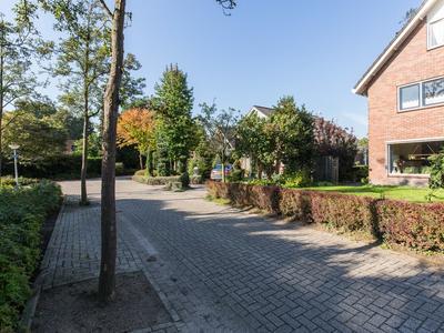 Van Der Grijnstraat 2 in Doetinchem 7009 MC
