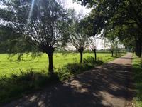 Hoefstraat in Herpen 5373