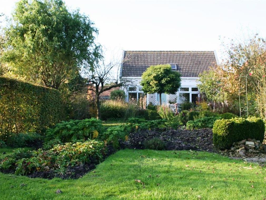 Terp 31 in Wiuwert 8637 VH