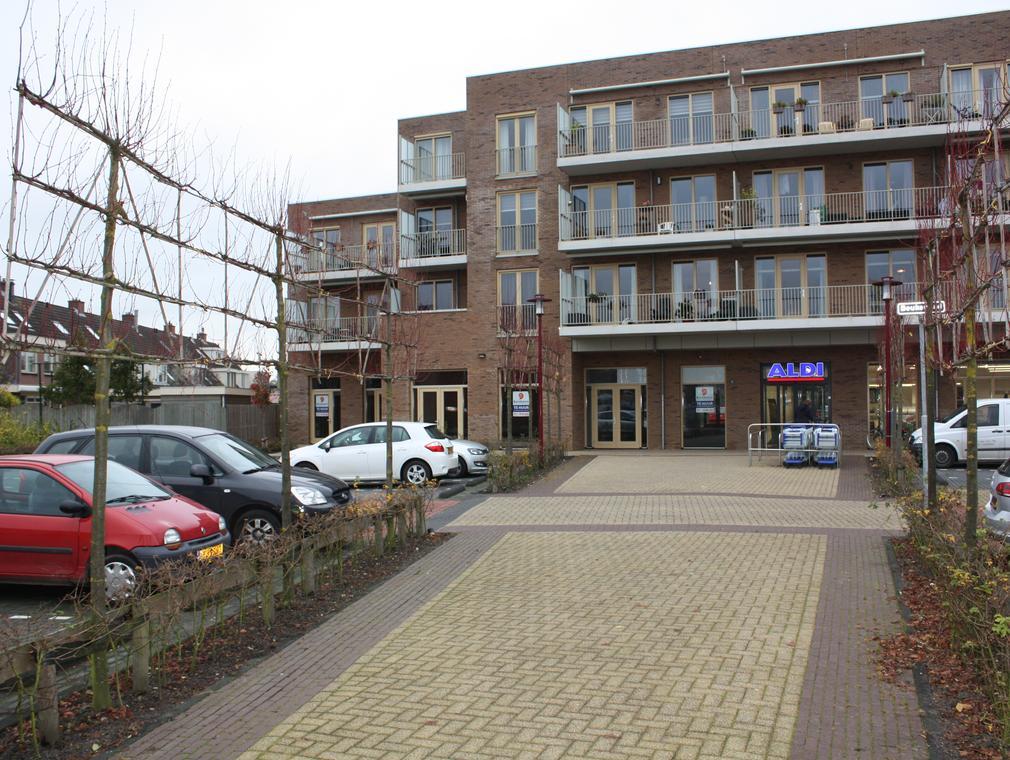 Lindenplein in Ter Aar 2461 DC