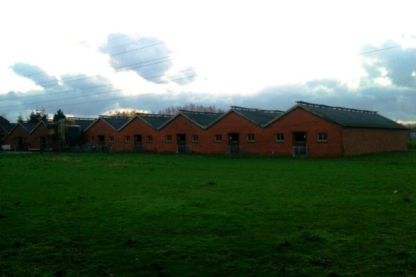 Kerkwijkweg 2 A in Didam 6942 ND