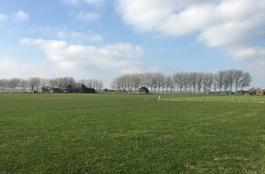 Dalweg 2 A in Eexterzandvoort 9464 TE