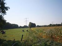 Vlierdijk in Wierden 7641 PB