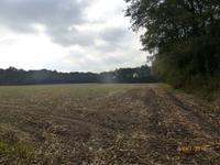 Grensweg in Stramproy 6039 RS