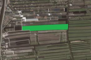 Henegouwernesse in Waddinxveen 2741 KA