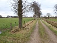 Wenumseveldweg Wenum in Wenum Wiesel 7345 DE
