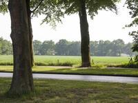 Nieuwe Veenendaalseweg 222 A in Rhenen 3911 MS