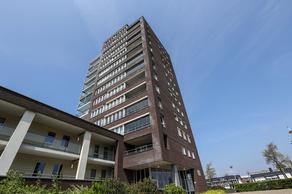 P C Hooftstraat 81 in Hellevoetsluis 3221 TS