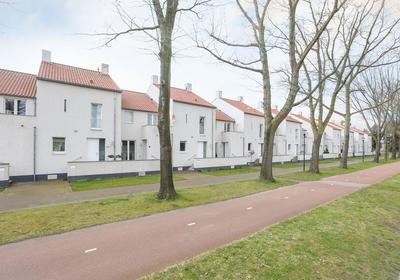 Bosfazant 7 in Eindhoven 5658 CA