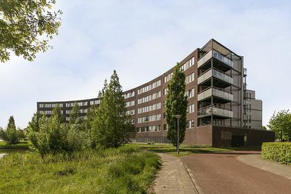Oldenallerhout 76 in Harderwijk 3845 EC