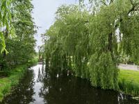 Aan De Molenvliet 1 in Uithoorn 1423 BE