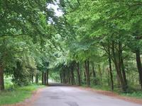 Steenbakkersweg 3 C30 in Erm 7843 RM