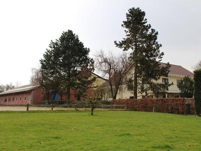 Maasdijk 52 A in Aalst 5308 JD