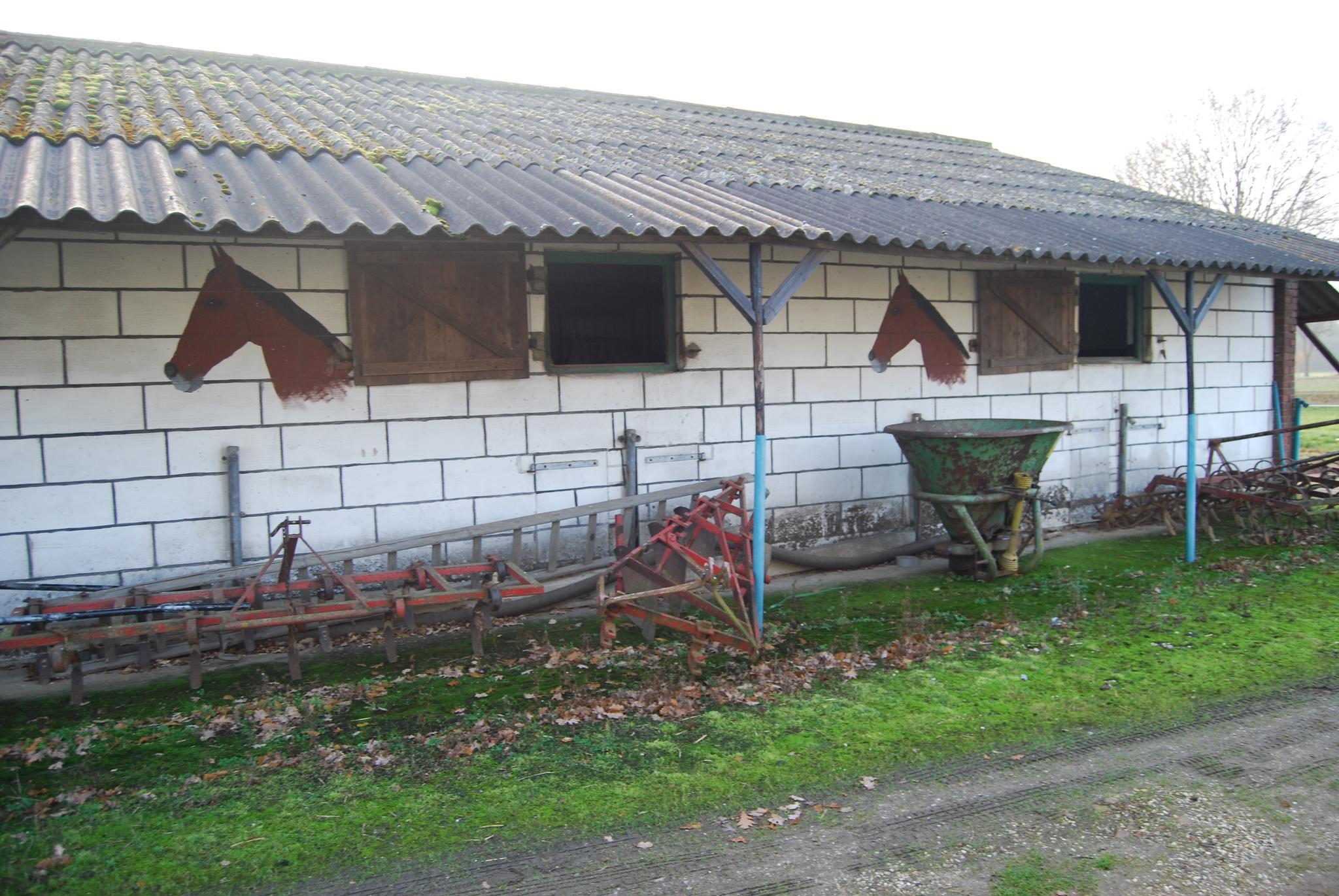 Mommersweg 1 in belfeld 5951 nh paardenhouderij te koop for Paardenbedrijf te koop