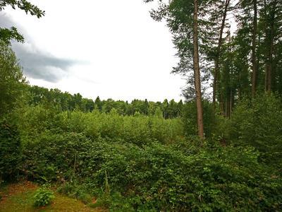 Holtweg 9 9 in Gees 7863 TA