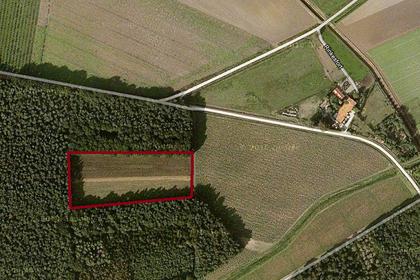 Rinkesfort in Maasbree 5993 PV
