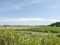 Stoofdijk 4 in Scherpenisse 4694 RE