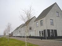 Vink 1 in Muntendam 9649 LD