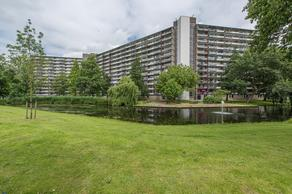 Schubertplein 195 in Schiedam 3122 NL