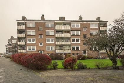 Delftlaan 301 Ii in Haarlem 2024 CE
