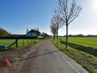 Renbaan in Pannerden 6911 KH