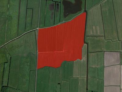 Miedwei in Kollumerzwaag 9298