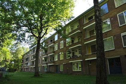 Antonie Van Leeuwenhoeklaan 213 in Soesterberg 3769 XG