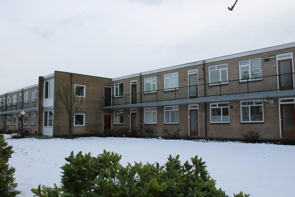 Dwingelooweg 108 in winschoten 9671 kh: appartement. bruins