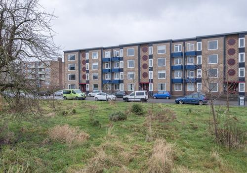 Florakade 182 in Groningen 9713 ZE