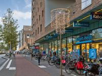 Zwenkgrasstraat 5 in Amsterdam 1087 SG