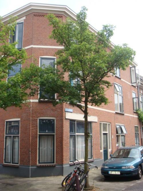 Cronjestraat, Leiden