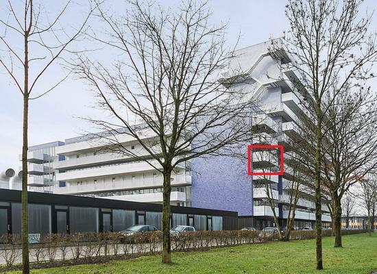 Vijfhagen 181 in Breda 4812 XT