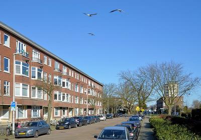 Ramlehweg 23 A in Rotterdam 3061 JV