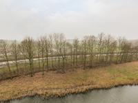 Madeliefberg 88 in Roosendaal 4708 NP