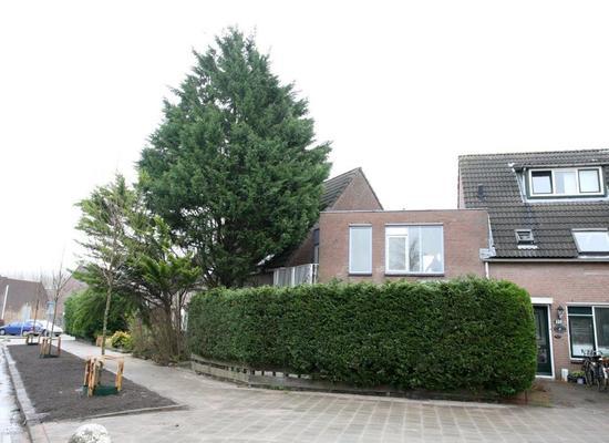 Mastbos 116 in Hoofddorp 2134 NT